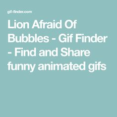 Lion Afraid Of Bubbles - Gif Finder - Find and Share funny animated gifs