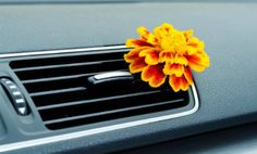9 DIY Car Air Fresheners to Spruce Up Your Ride | Care2 Healthy Living