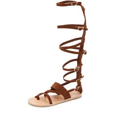 Ancient Greek Sandals Alethea High Gladiator Sandals ($205) ❤ liked on Polyvore featuring shoes, sandals, tobacco, real leather shoes, greek gladiator sandals, leather buckle sandals, buckle shoes and leather gladiator shoes