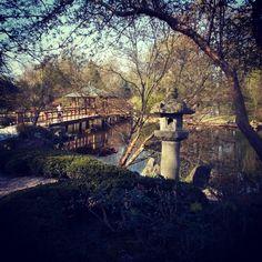 On instagram by evgen_shevchik #landscape #contratahotel (o) http://ift.tt/24IEZv2 japoński. Wrocław #nature  lovers #bridge #river #parks #Japanesegarden #garden #Poland #Wroclaw #plants #trees #beautifulplaces #travel #traveling #trip #tourism #путешествия #красивыеместа #японскийсад #Польша #Вроцлав #природа #пейзажи
