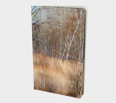 Mystic River Branches Blank Notebook available https://artofwhere.com/artists/wordsandimagesbycynthia/books/notebook/864210