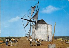 Portugal Nazare Moinho Moulin Windmuhle Mill | eBay