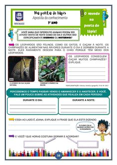 Blog, Teacher Lesson Plans, Activities For Kids, Infant Activities, Literacy Activities, May, 3 Year Olds, Leopards, Note Cards