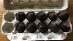 How to Store Fresh Figs Fig Recipes, Cooking Recipes, Recipes With Figs, Crepe Recipes, Cooking Hacks, Waffle Recipes, Spring Recipes, Burger Recipes, Gourmet