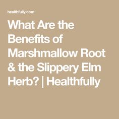 What Are the Benefits of Marshmallow Root & the Slippery Elm Herb? | Healthfully