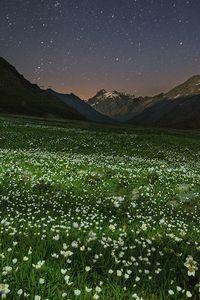 Alpine Oasis in Italy HTC Butterfly Wallpaper