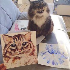 25 Funny Cat Poses | PicturesCrafts.com