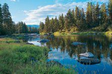 Montana Summer Vacation at Paws Up