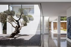 F House by Pitsou Kedem | Walls of glass, stone and wood line courtyards at Pitsou Kedem's House F