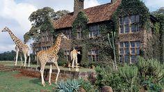 Stay at Giraffe Manor, Kenya