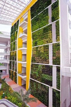 ITE HQ & ITE COLLEGE CENTRAL in Singapore by Nature Landscapes