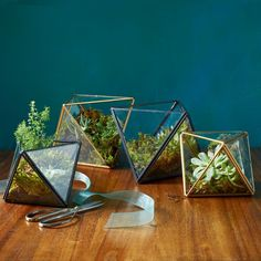 Faceted Terrariums For the Mom Who Loves to Decorate These geometric terrariums will liven up any dresser, countertop, or mantel — and they make beautiful dinner-party centerpieces, especially when grouped together in a cluster. Give her an empty one to grow in or get her started by planting a cactus or succulent for her to tend to.  Starts at $29, westelm.com