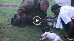 Un chien adulte et un chiot sauvés d'un incendie par un pompier