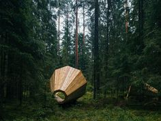 Three massive wood megaphones in Estonia were built to enhance the sounds of nature.