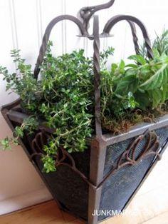 light fixture planter