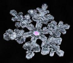 Snowflake-a-Day #70   by Don Komarechka