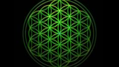 528Hz. This frequency encourages us to restore human consciousness to its full power and potential. 528Hz resonates at the heart of the Sun (recorded by NASA...