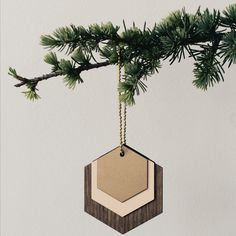 Wooden Jewellery Hexagon by Ferm Living at Dotmaison