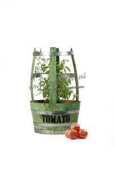 Tomato Barrel