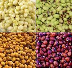 ... Peas including, cream peas, field peas, crowder peas and black-eye