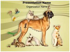 Animals Pets Powerpoint Template is one of the best PowerPoint templates by EditableTemplates.com. #EditableTemplates #PowerPoint #Reptile #Animal