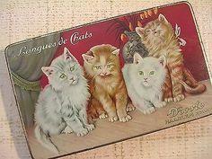Vintage-Tin-Box-Droste-Chocolate-Langues-de-Chats-Cats-Kittens-Dutch
