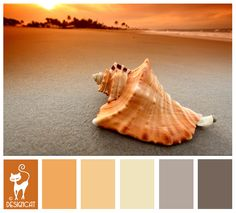 Conch Sunset - Grey, Slate, beige, Sand, Brown, apricot - Designcat Colour Inspiration Board