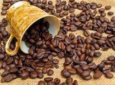 Exportadores de café se capacitan en ventanilla única                                                                                                                                                                                 Más
