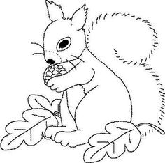 Squirrel Source by Fall Coloring Pages, Coloring Pages For Kids, Coloring Books, Preschool Art Projects, Preschool Crafts, Autumn Crafts, Craft Patterns, Stone Art, Squirrel
