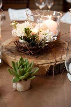 Plantes grasses pour la décoration de la table