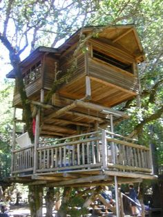 Kid's tree house, i would love this!!!!
