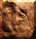 Mastodon Petroglyph - 33GU218