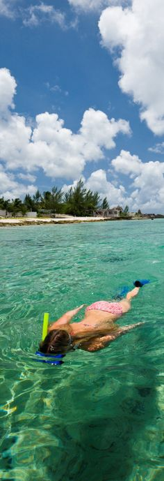 Start the day snorkeling in crystal clear Caribbean waters.