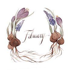 Kelsey Garrity-Riley Illustration: February.