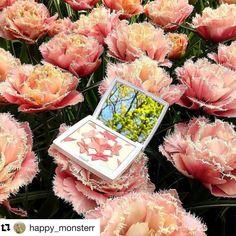 #Repost @happy_monsterr with @repostapp  Japan-Kiev-Netherlands-Kiev Toshiya San Thank you!!!!Spasibo))) Прекрасные цветы Кёкенхова как раз подходят для пудры Blush'n Bloom азиатской линии Dior.  Деликатный влажный хайлайтер в холодном подтоне и нежно розовые румяна - воплощение гармоничности и весенней нежности #diormakeup #diorjapan #diorjapanexclusive #fudejapan #dior #makeup #makeuplover #beautyaddict #japanbeautyproduct #japanbeauty #диор #японскаякосметика #макияж #хайлайтер #румяна