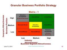 Granular business portfolio matrix