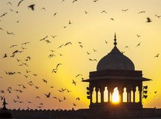 Sunrise on Jama Mashid temple, Delhi, India  I remember thinking... the masjid is pretty. But oh, the smell.... :S