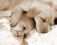 touch my heart...two babies !!! Dogs and Babies 2 best things on earth!!!