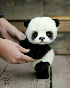 baby pandas Cute Baby Animals That Will Make You Go AwwJoin us to protect to know Mosiyeef fundrasing plan, You buy, We donate. Cute Panda Baby, Baby Panda Bears, Baby Animals Super Cute, Cute Baby Dogs, Cute Stuffed Animals, Cute Little Animals, Cute Funny Animals, Cute Puppies, Cute Cats