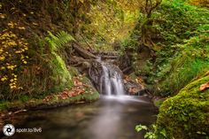 The millstream Canyon is a very small Canyon near Tengen in the beautiful…