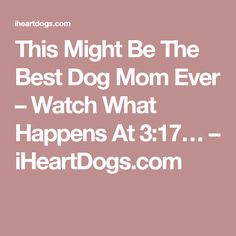 This Might Be The Best Dog Mom Ever – Watch What Happens At 3:17… – iHeartDogs.com