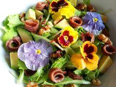 Le acciughe costituiscono un ottimo alimento per la ricchezza di proteine e Omega-3, proteine, minerali e vitamine B