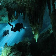 PADI Courses and Tours