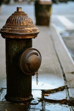 Brown Fire Hydrant