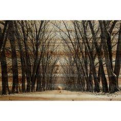 Parvez Taj 'Tree Path' by Parvez Taj Painting Print on Natural Pine Wood