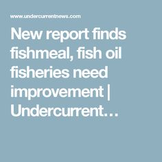 New report finds fishmeal, fish oil fisheries need improvement | Undercurrent…