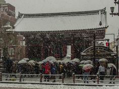 Asakusa trademark, Kaminarimon this afternoon. Taken on February 8, 2014. © Grigoris A. Miliaresis