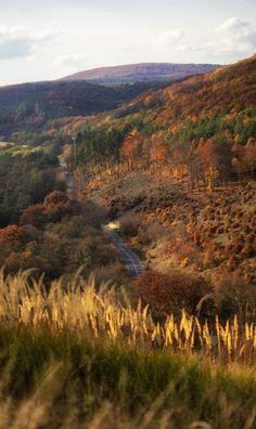 Őszi csodák / Autumn Wonders by Darubácsi Mesefája - PhotoBlog