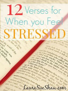 12 Verses for When You Feel Stressed ~ When life seems overwhelming, turning to God's word is reassuring with promises of peace.