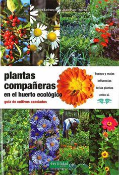 Plantas compañeras en el huerto ecológico   Terra.org - Ecología práctica